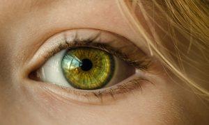 目のクマ美容鍼